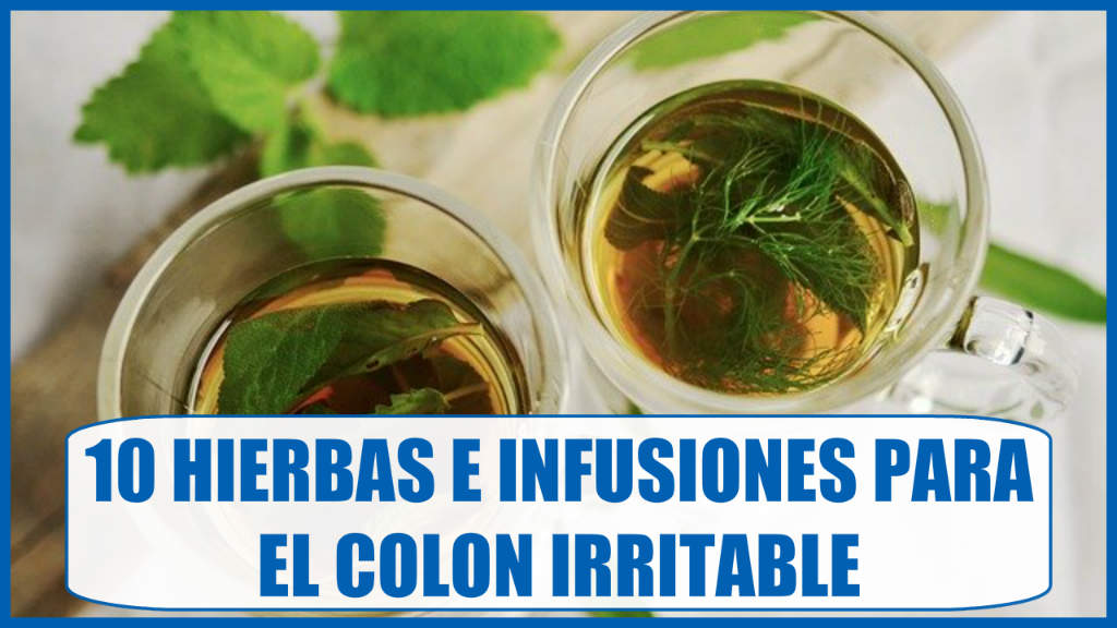 10 Hierbas e infusiones para el colon irritable